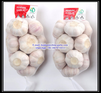 Chinese Fresh Garlic 500g * 20bags/10kg carton (Red Garlic & White Garlic)