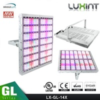 LUXINT latest led grow light high par no fans large footprint full spectrum 1000w led grow light for medical growing\hydroponics