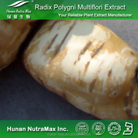 Radix Polygoni Multiflori Extract Powder 4:1~30:1