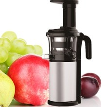 personal stainless steel fruit blender as seen on TV