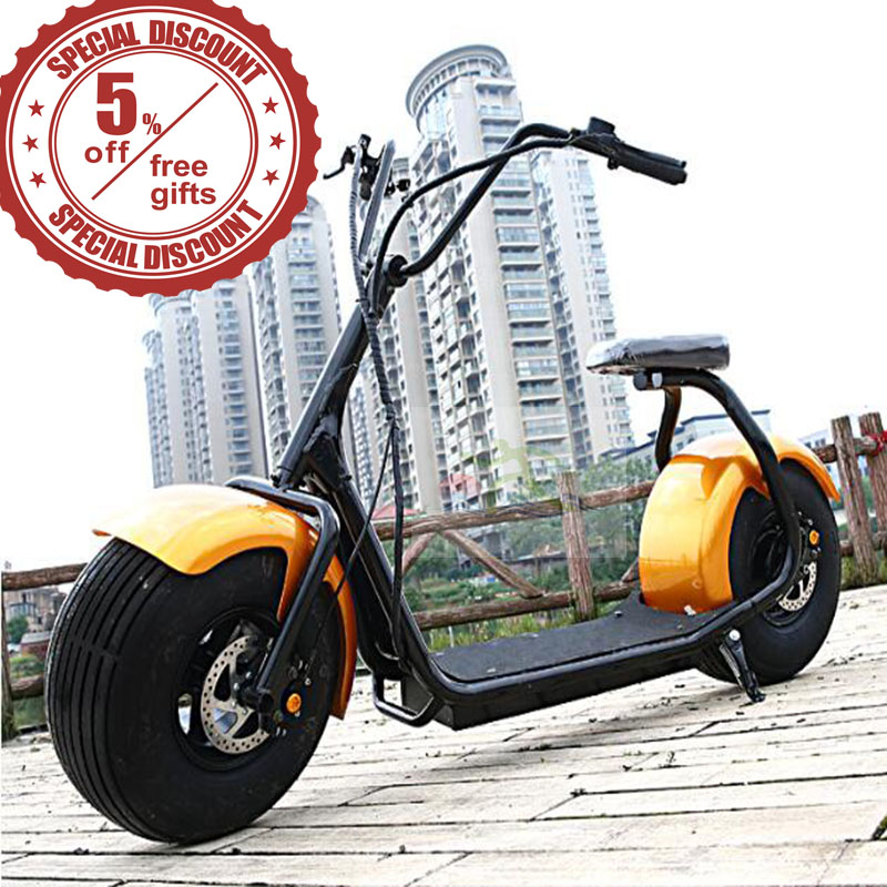 City mobility citycoco 1000W brushless adult electric motorcycle 2 wheels fat tire electric scooter