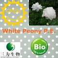 Natural Fresh Root Product White Peony P.E. powder