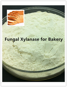Best Fungal Xylanase in China as Flour Improver