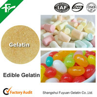 High quality Halal Edible Gelatin/ Kosher Gelatin powder/ unflavored Food grade gelatin
