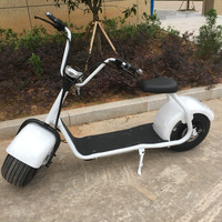 Sunport 2017 new 60v 1000w 20ah most powerful electric scooter car dealers 2 wheels 2 seat
