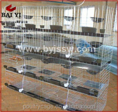 Fancy Pigeon Mesh Cage And Pigeon House For 12 Pigeons