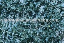 High quality Black Cohosh P.E/Cimicifuga Romose L./CAS NO:528-43-8