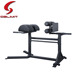 Rizhao Fitness Glute Ham Developer Commercial GHD Rack