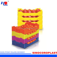 Packing Plastic Vegetable Crate