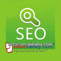 Internet business, online marketing how to do Turkish web business seo