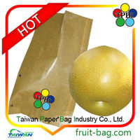 high quality pear growing paper bag for agriculture