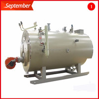 Made in China Cheap Natural Gas Fired Steam Boiler