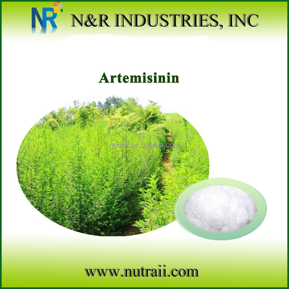 High quality Natural pure Artemisinin 99% plant extract