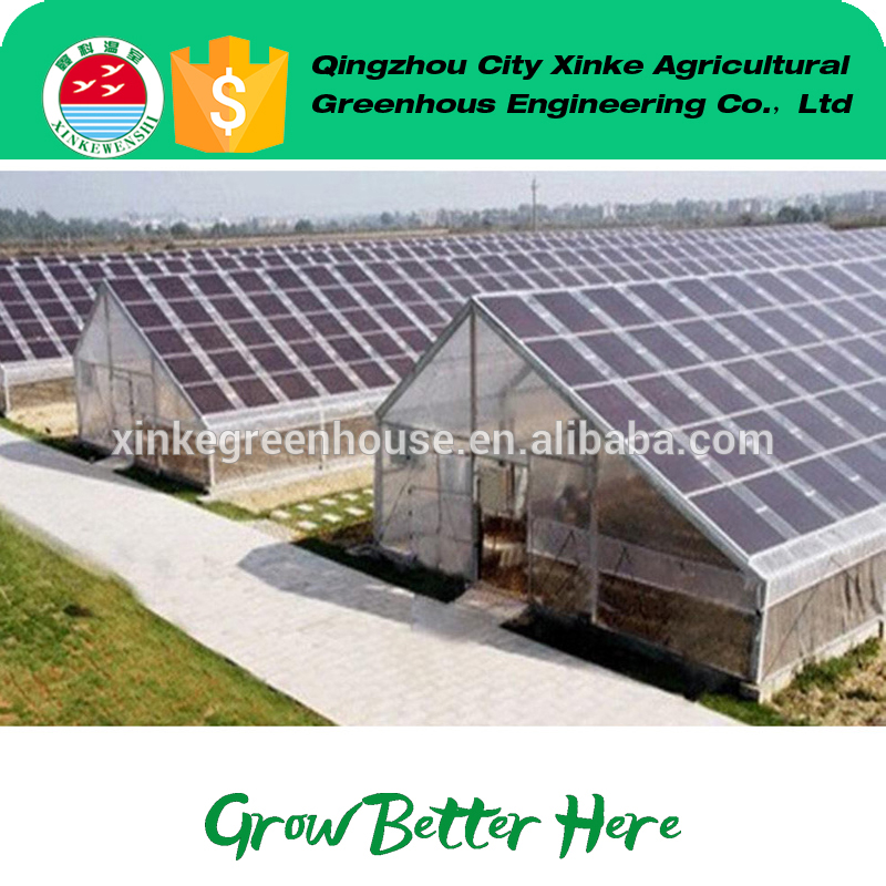 factory hot sales climate controlled solar energy greenhouses for sale OEM
