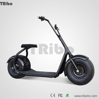 Waterproof Sales promotion OEM logo manfacturer direct 1000w electric dirt bike
