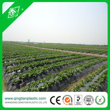UV Treated Black&Silver Mulching Film For Growing Strawberries