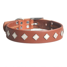 Top material leather dog cervical collar from china