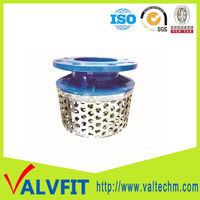 DI pump rose strainer with ss basket strainer