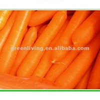 2014 Crop Chinese Wholesale Fresh Carrot - Lowest Price with High Quality