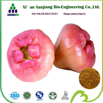 Natural Frozen Fig Powder