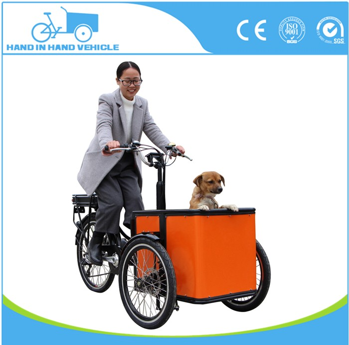 3 wheel electric bakfiets front load tricycle