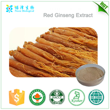 Natural herbal extract tonic Red ginseng extract liquid/Ginseng ginsenosides 40%