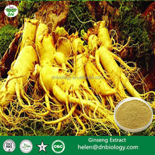 Hot sale Ginseng Extract/Ginseng Root Extract/Panax Ginseng Leaf Extract