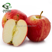 2018 organic delicious fresh juicy fuji gala apple