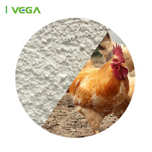 bulk cattle feed Florfenicol powder veterinary medicine for sheep/goat/poultry