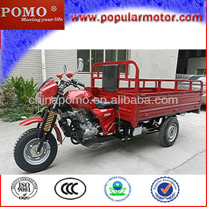 New Hot Popular Gasoline Cargo Tricycles Pioneer