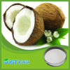 Factory Supply High Quality Coconut Milk Powder