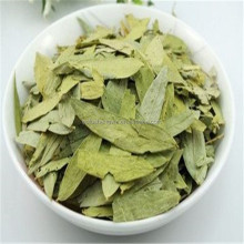 High quality 6%sennosides A+B Senna Leaf (leaves) extract powder/Best price Organic cassia senna/weight manager