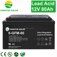 Free shipping 12v 80ah battery