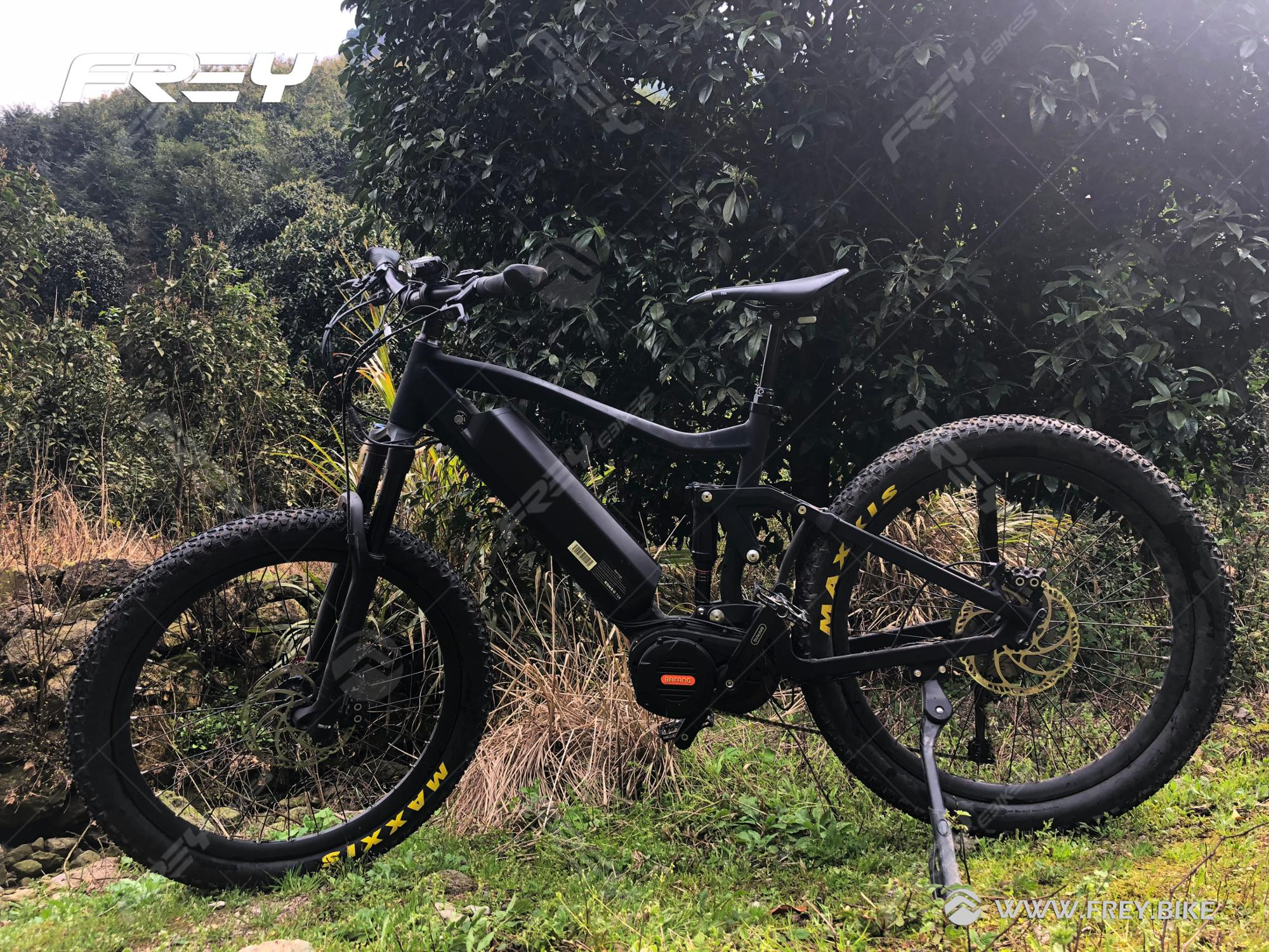 FREY top end speed pedelec 1000W full suspension mtb
