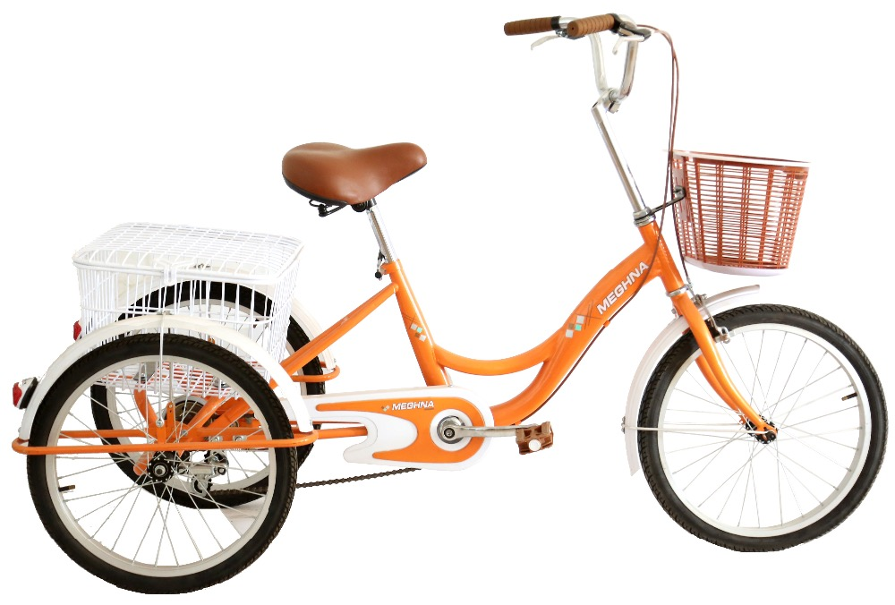 TR001 24 Inch Adult Cargo Bike With Steel Basket