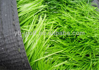 PGM Grass Seed Door Mat Plastic Grass Car Mat