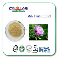 Chinese herb medicine Milk Thistle ,Milk Thistle Extract,Milk Thistle Powder
