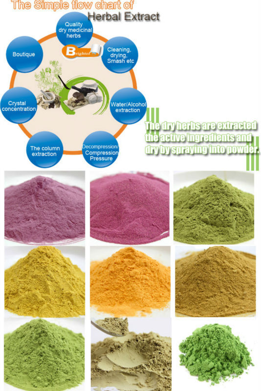 Top quality Spirulina powder/tablet/capsule