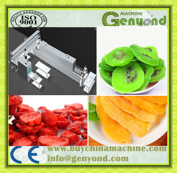 automatic fresh/dried/olive/cherry /plum pitter/fruit/ fruit pitting machine