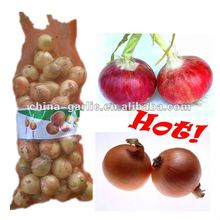 2012 Harvest China Fresh Organic Yellow Onion/Red Onion (20kg/bag)