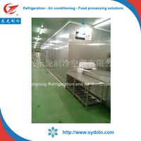 iqf freezer freezing processing type beef meat/scallop/patty spiral freezer