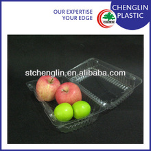 disposable clear pictures of fruit trays