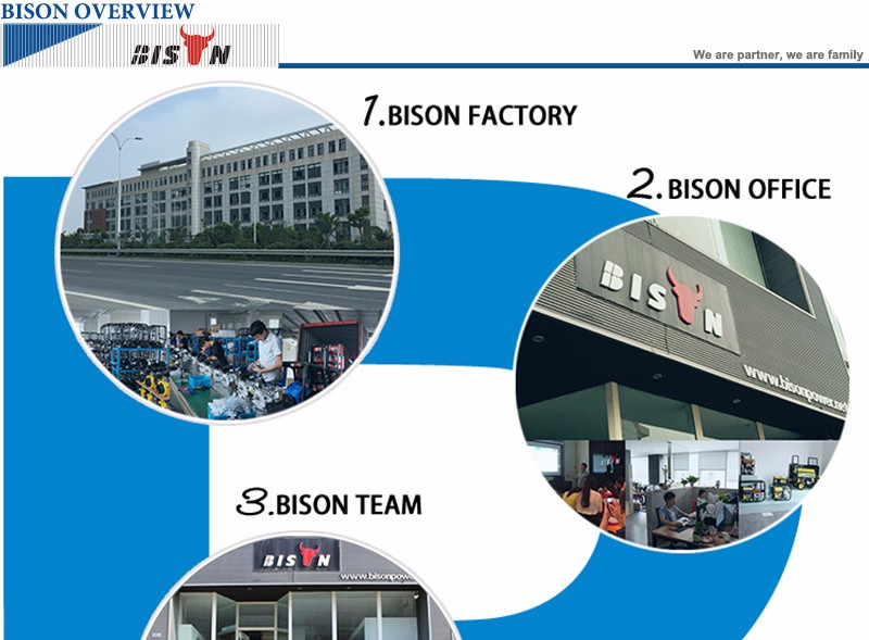 BISON(CHINA) Factory Sale 9.5kw Copper Wire 380V CE Approved Silent Portable Diesel 10kva Generator