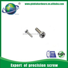 Pan screw with philip head