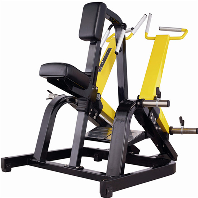 High salable Professional Free weight - row gym equipment <strong>A06</strong> from Shandong Maifeng Fitness