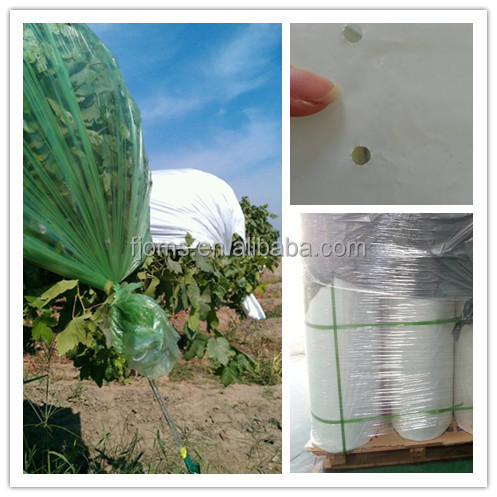 High quality Plastic film used in covering crop plantation