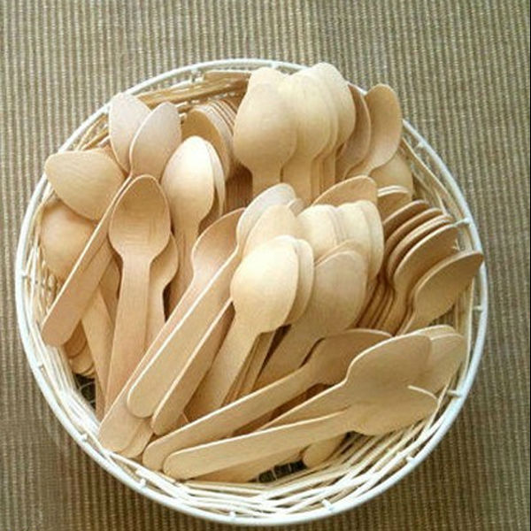 Various Biodegradable Ice Cream Spoon From China