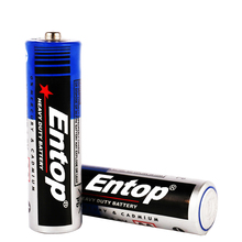 17 Years Professional OEM and ODM Manufacturer Extra Power and Long-lasting aa r6 zinc chloride dry battery
