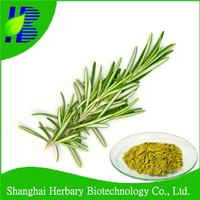 100% natural water soluble powder rosemary extract Rosmarinic acid