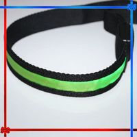 GIFT17 Nylon flashing LED dog pet collar electric fence underground